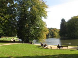 Summer s back best of brussels for Bois de la chambre bruxelles